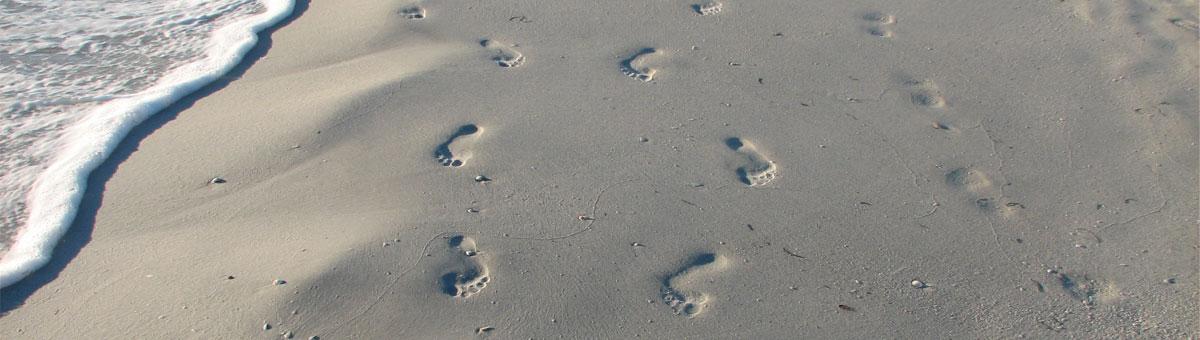 orthotic foot care Windsor, Lakeshore, Tecumseh, Belle River